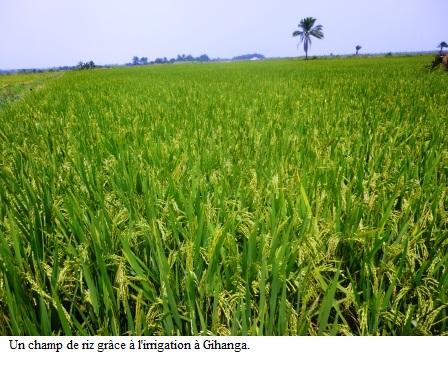 L'eau, une très grande richesse pour la population de la plaine de l'Imbo.